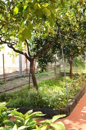 Appartamento in affitto a Bogliasco, Comodo Centro, Con giardino, 95 mq - Foto 14
