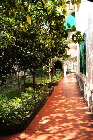 Appartamento in affitto a Bogliasco, Comodo Centro, Con giardino, 95 mq - Foto 11