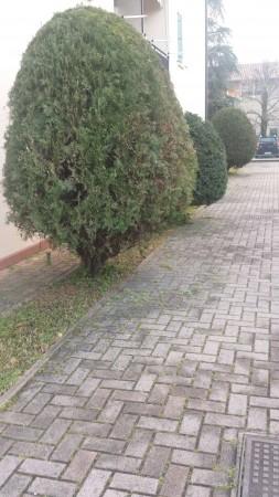 Appartamento in vendita a Ponte San Nicolò, Con giardino, 95 mq - Foto 4