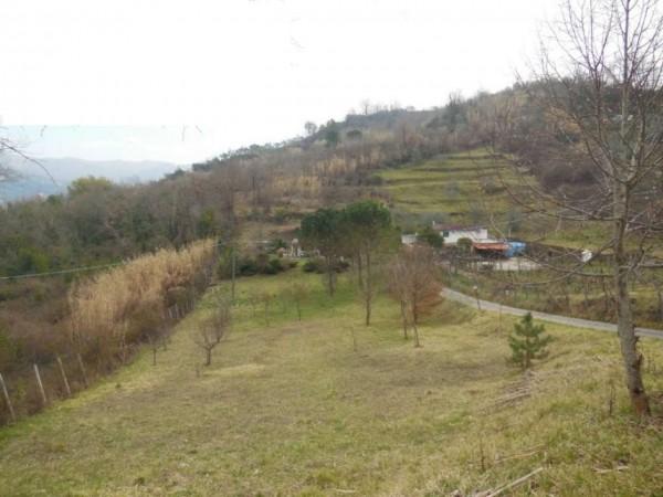 Casa indipendente in vendita a Olevano Romano, Ara Della Forca, Con giardino, 70 mq - Foto 8