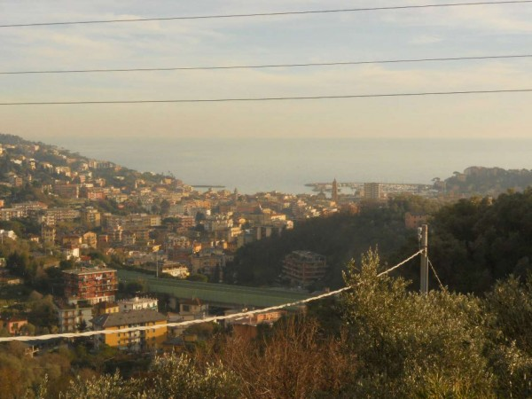 Villa in vendita a Rapallo, Castellino, Con giardino, 290 mq - Foto 15