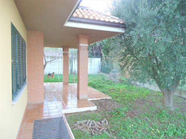 Casa indipendente in vendita a Tortoreto, Mare, Con giardino, 300 mq - Foto 1