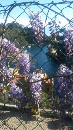 Appartamento in affitto a Rapallo, San Michele Di Pagana, Con giardino, 120 mq - Foto 12