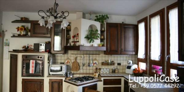 Appartamento in vendita a Monteriggioni, Arredato, con giardino, 78 mq - Foto 11
