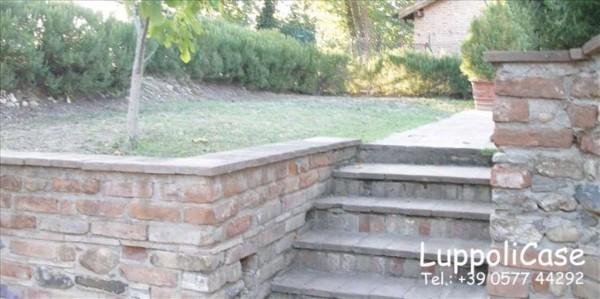 Villa in vendita a Castelnuovo Berardenga, Con giardino, 140 mq