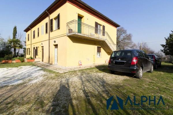 Appartamento in affitto a Bertinoro, Arredato, con giardino, 60 mq - Foto 2