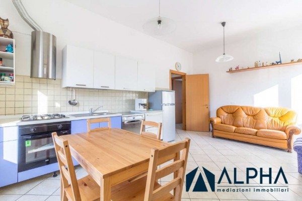 Appartamento in affitto a Bertinoro, Arredato, con giardino, 60 mq - Foto 18