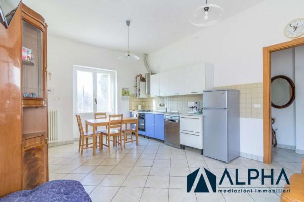 Appartamento in affitto a Bertinoro, Arredato, con giardino, 60 mq - Foto 19