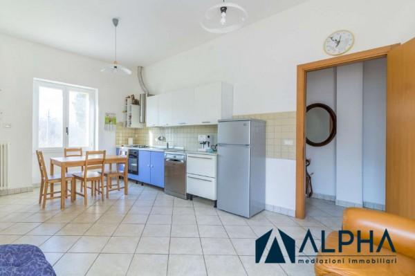Appartamento in affitto a Bertinoro, Arredato, con giardino, 60 mq - Foto 20