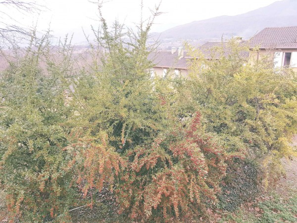 Villetta a schiera in vendita a Bregano, Arredato, con giardino, 115 mq - Foto 13