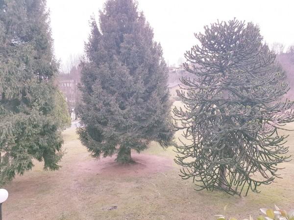 Villetta a schiera in vendita a Bregano, Arredato, con giardino, 115 mq - Foto 14