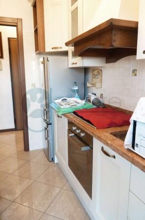 Appartamento in vendita a Milano, Dergano/affori, Con giardino, 39 mq - Foto 9