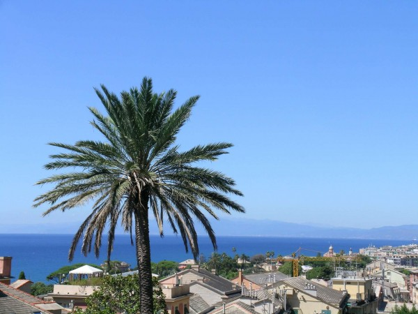 Villa in vendita a Genova, S.ilario, Con giardino, 300 mq - Foto 11