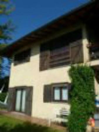 Appartamento in affitto a Ispra, Girolo, Arredato, con giardino, 70 mq - Foto 16