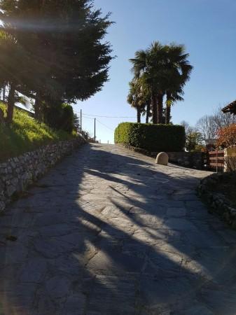 Appartamento in affitto a Ispra, Girolo, Arredato, con giardino, 70 mq - Foto 41