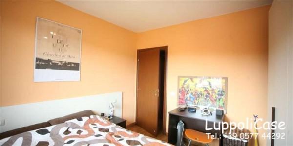 Appartamento in vendita a Castelnuovo Berardenga, Arredato, 40 mq - Foto 8