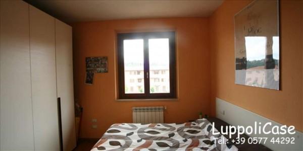 Appartamento in vendita a Castelnuovo Berardenga, Arredato, 40 mq - Foto 9