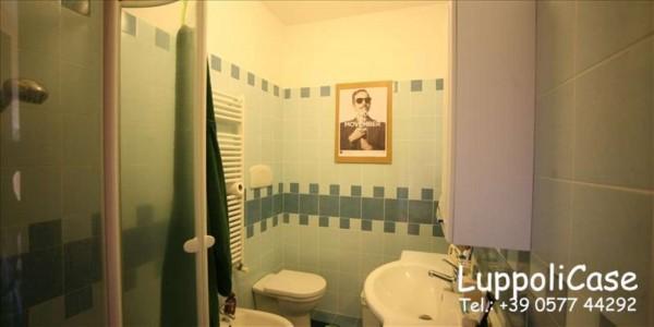 Appartamento in vendita a Castelnuovo Berardenga, Arredato, 40 mq - Foto 7