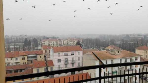 Appartamento in affitto a Alessandria, Ospedale, 80 mq