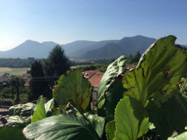 Appartamento in vendita a Villarbasse, Con giardino, 200 mq - Foto 7