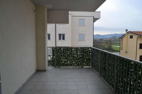 Appartamento in vendita a Campi Bisenzio, La Madonnina, Con giardino, 81 mq - Foto 15