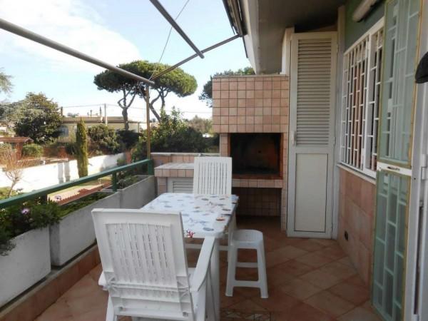 Appartamento in vendita a Anzio, Cincinnato, Con giardino, 50 mq