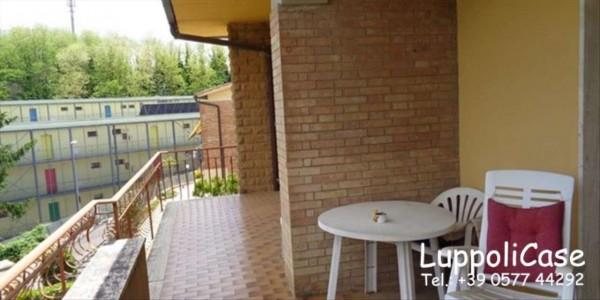 Appartamento in affitto a Monteriggioni, Con giardino, 238 mq - Foto 14