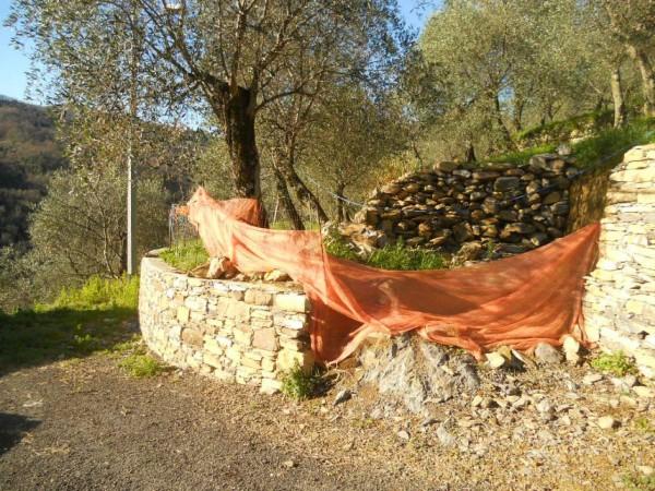 Rustico/Casale in vendita a Camogli, Bana, Con giardino, 277 mq - Foto 19
