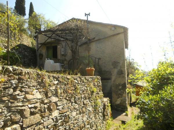 Rustico/Casale in vendita a Camogli, Bana, Con giardino, 277 mq - Foto 1