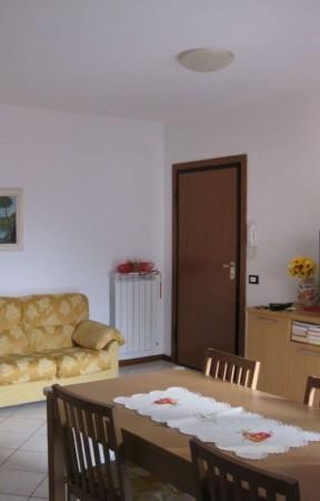 Appartamento in affitto a Rivalta di Torino, Arredato, 45 mq
