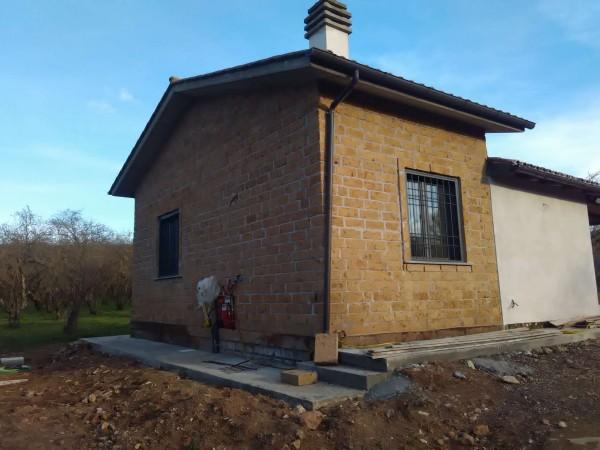 Rustico/Casale in affitto a Vetralla, Con giardino, 35 mq - Foto 5