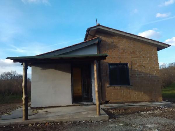 Rustico/Casale in affitto a Vetralla, Con giardino, 35 mq
