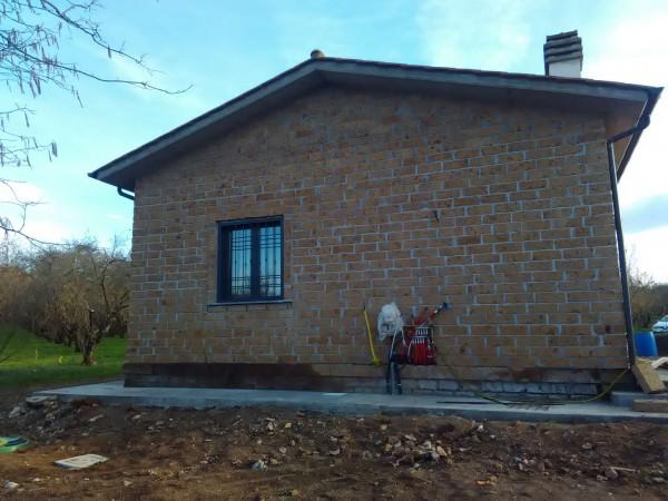Rustico/Casale in affitto a Vetralla, Con giardino, 35 mq - Foto 2