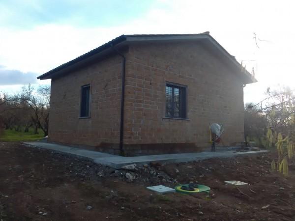 Rustico/Casale in affitto a Vetralla, Con giardino, 35 mq - Foto 4