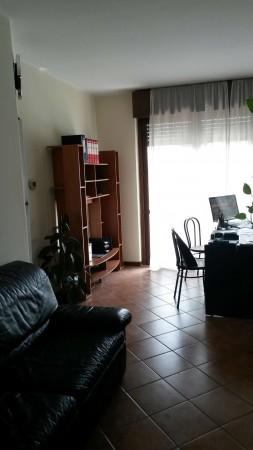 Appartamento in affitto a Cesate, Arredato, 38 mq - Foto 5
