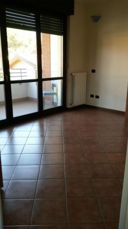Appartamento in affitto a Cesate, Arredato, 38 mq - Foto 2