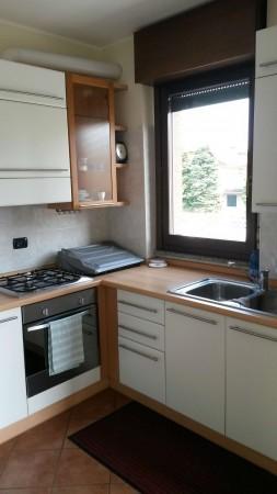 Appartamento in affitto a Cesate, Arredato, 38 mq - Foto 11