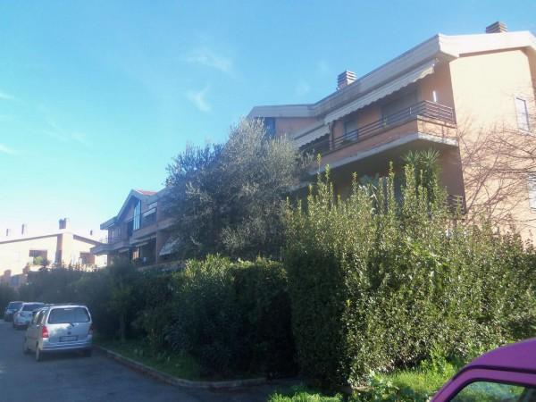 Appartamento in affitto a Roma, Olgiata, Con giardino, 100 mq