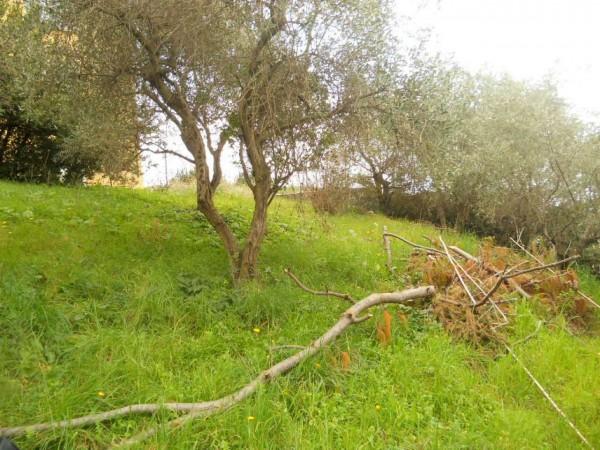 Appartamento in vendita a Zoagli, Sant'andrea Di Rovereto, Con giardino, 160 mq - Foto 3