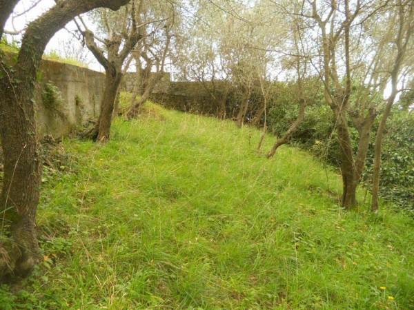 Appartamento in vendita a Zoagli, Sant'andrea Di Rovereto, Con giardino, 160 mq - Foto 5