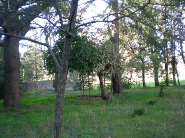 Appartamento in vendita a Vetralla, Con giardino, 120 mq - Foto 1