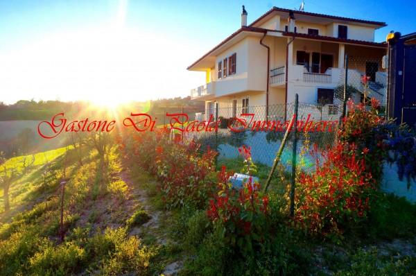 Appartamento in affitto a Fermo, Colline Fermane, Con giardino, 55 mq - Foto 1