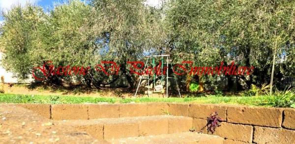 Appartamento in affitto a Fermo, Colline Fermane, Con giardino, 55 mq - Foto 10