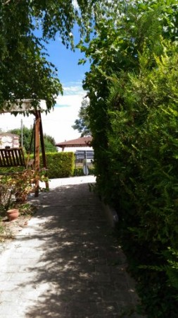 Locale Commerciale  in vendita a Celle Enomondo, Celle, Con giardino, 208 mq - Foto 16