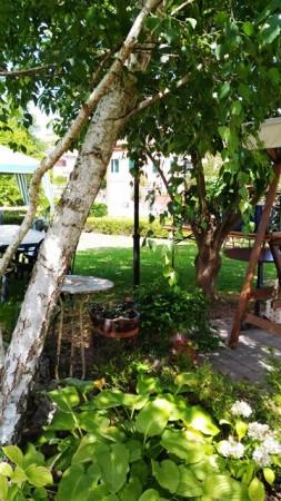 Locale Commerciale  in vendita a Celle Enomondo, Celle, Con giardino, 208 mq - Foto 5