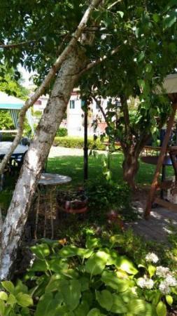 Locale Commerciale  in vendita a Celle Enomondo, Celle, Con giardino, 208 mq - Foto 15