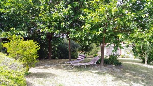 Locale Commerciale  in vendita a Celle Enomondo, Celle, Con giardino, 208 mq - Foto 8