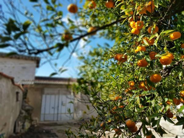 Casa indipendente in vendita a Dolianova, Con giardino, 114 mq - Foto 14