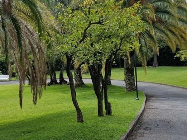 Appartamento in vendita a Genova, Capolungo, Arredato, con giardino, 59 mq - Foto 45