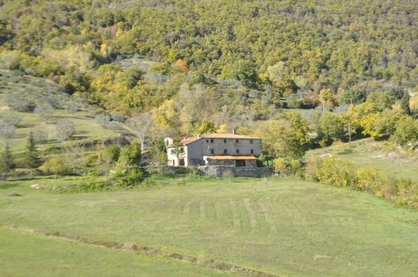 Locale Commerciale  in vendita a Chitignano, Campagna, Con giardino, 600 mq - Foto 4